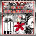 **Bibis Collection