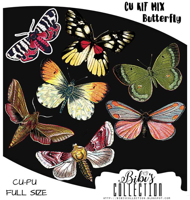 CU MIX PACK BUTTERFLY ELEMS I
