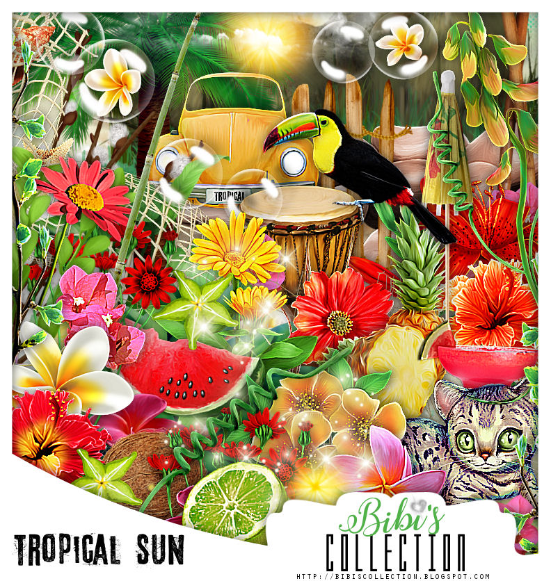 TROPICAL SUN MATCH FOR ANDY COOPER