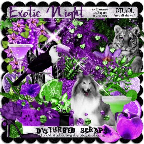 Exotic Night