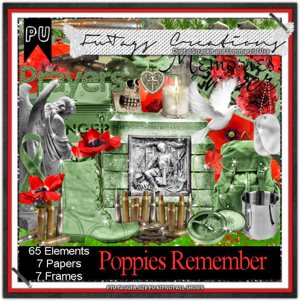 Poppies Remember