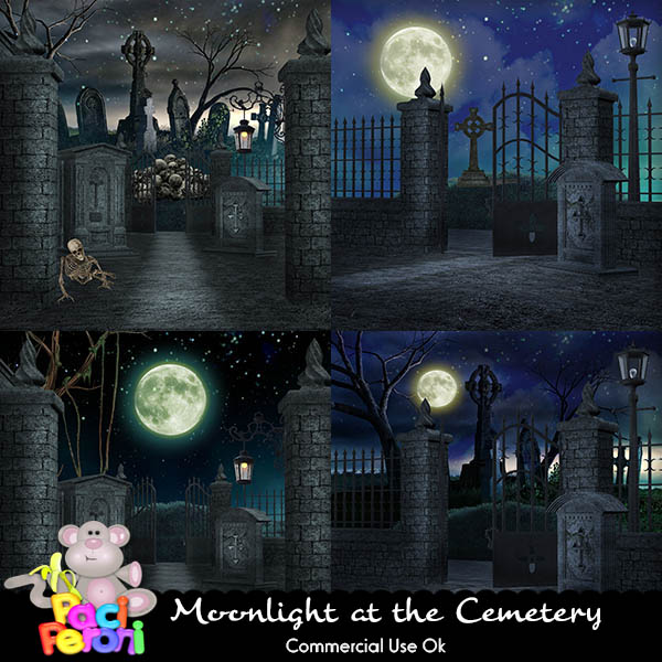 Moonlight at the Cemetery