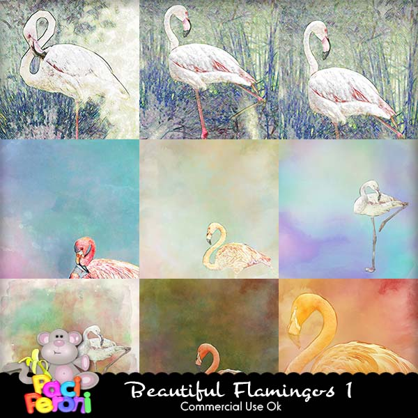 Beautiful Flamingos 1