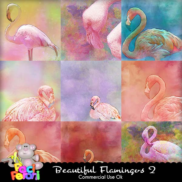 Beautiful Flamingos 2