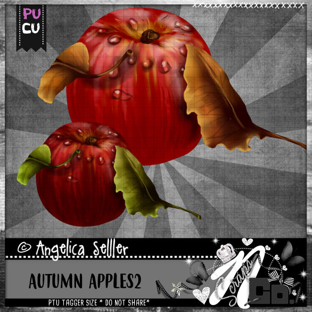 AUTUMN APPLE 2 CU PU TEMPLATE