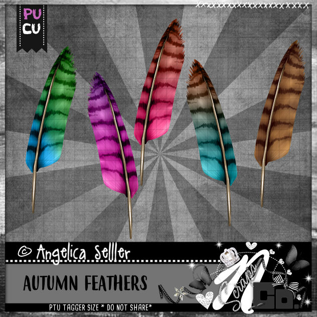 AUTUMN FEATHERS CU PU TEMPLATE