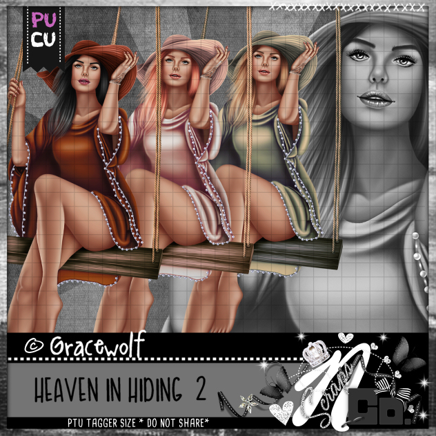 HEAVEN IN HIDING 2
