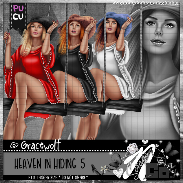 HEAVEN IN HIDING 5