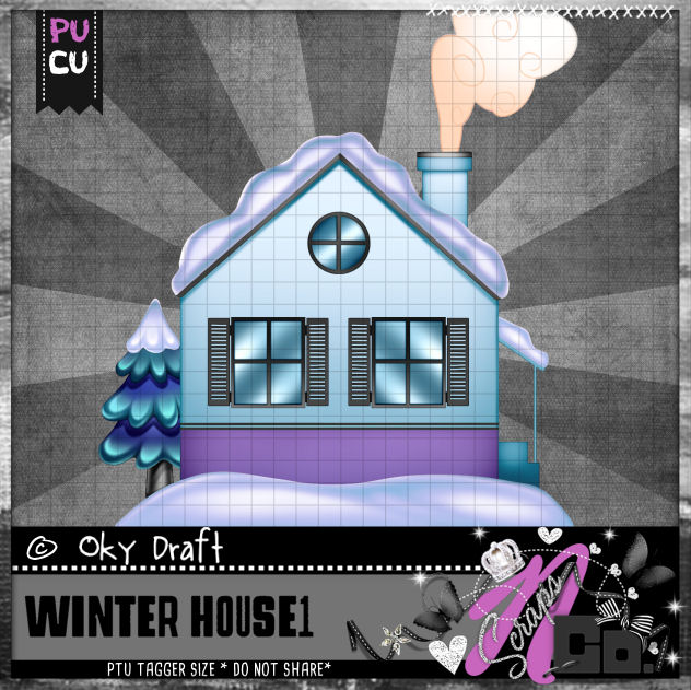 WINTER HOUSE 1