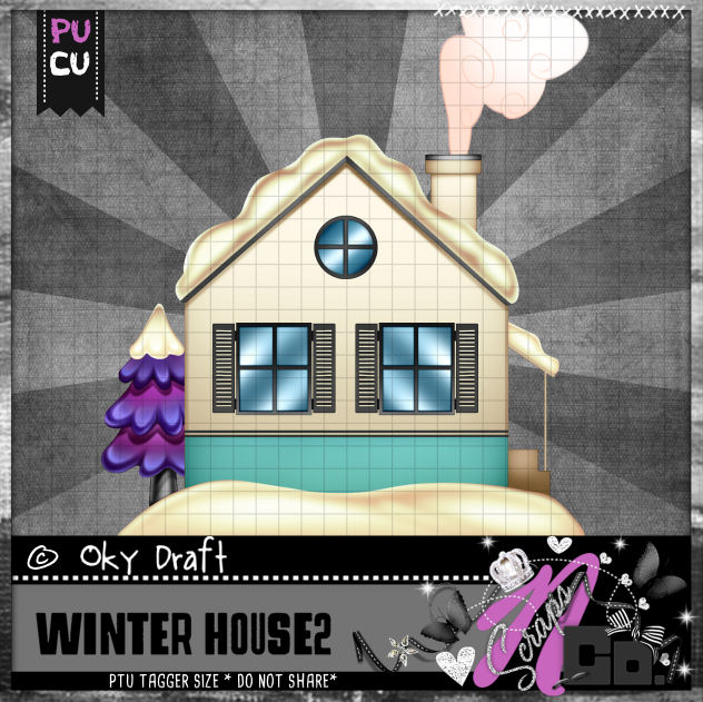 WINTER HOUSE 2