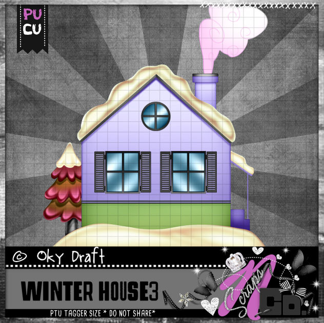 WINTER HOUSE 3