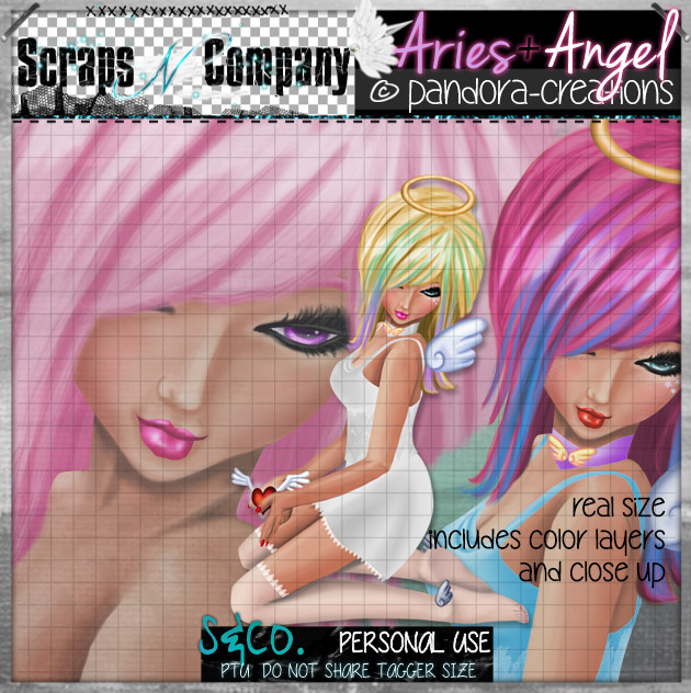 ARIES+ANGEL