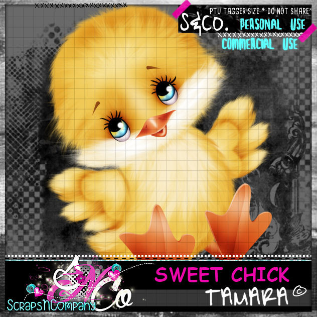 SWEET CHICK