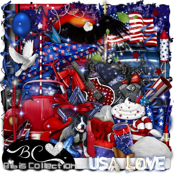 USA LOVE FREE WITH PURCHASE OF 4