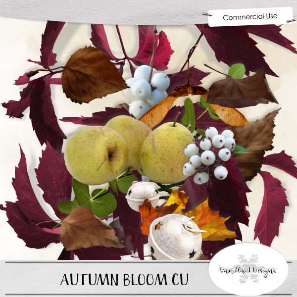 Autumn bloom CU