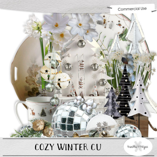 Cozy Winter CU