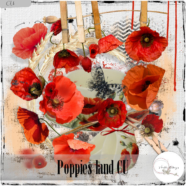 Poppies land CU