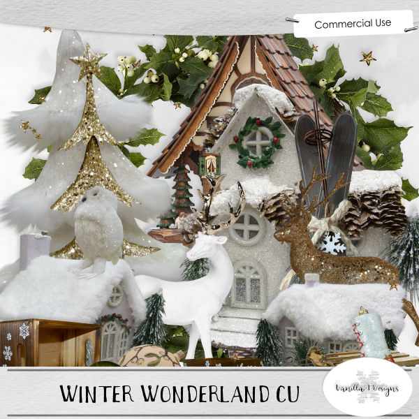 Winter Wonderland CU