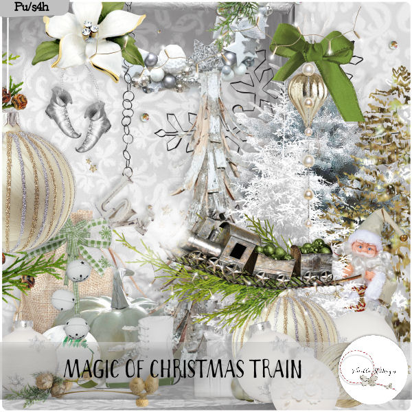 Magic of Christmas train