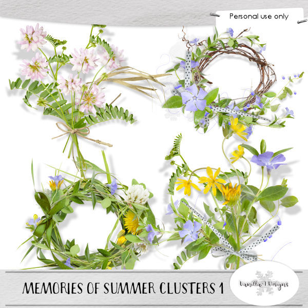 Memories of summer clusters